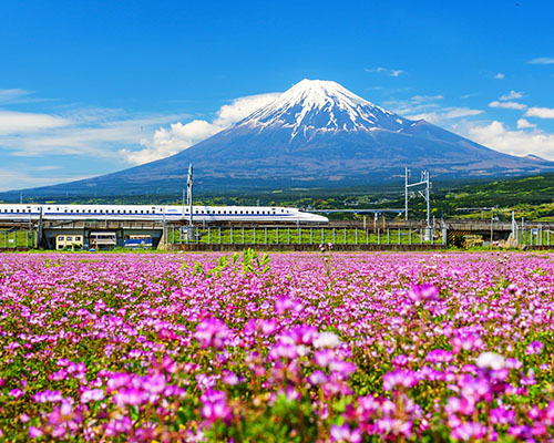 Train and Fuji, Shinkansen, bullet train, japan
